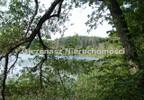 Działka na sprzedaż, Lucim, 6500 m² | Morizon.pl | 9354 nr6