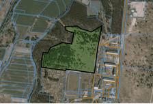Działka na sprzedaż, Trzebień, 87783 m²