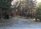 Działka na sprzedaż, Tuchomie, 12400 m²   Morizon.pl   1135 nr2