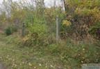 Działka na sprzedaż, Sarnów, 67100 m² | Morizon.pl | 0696 nr16