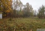 Działka na sprzedaż, Sarnów, 67100 m² | Morizon.pl | 0696 nr9