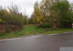 Działka na sprzedaż, Sarnów, 67100 m² | Morizon.pl | 0696 nr13