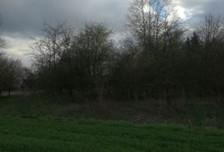 Działka na sprzedaż, Ściejowice, 1100 m²