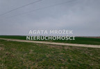 Działka na sprzedaż, Januszkowice, 3800 m² | Morizon.pl | 0394 nr2