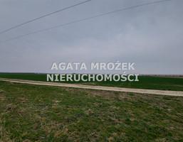 Morizon WP ogłoszenia | Działka na sprzedaż, Januszkowice, 3800 m² | 6354