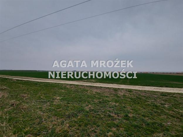Działka na sprzedaż, Januszkowice, 3800 m² | Morizon.pl | 0394