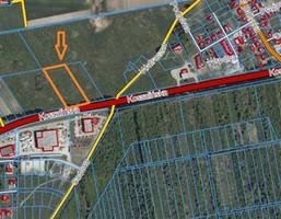 Morizon WP ogłoszenia | Działka na sprzedaż, Stare Bielice, 9992 m² | 6200
