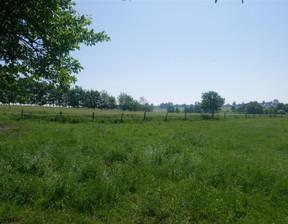 Działka na sprzedaż, Ogrodniki, 17000 m²
