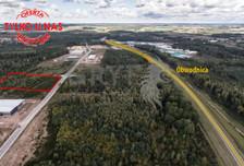 Działka na sprzedaż, Płaszewko, 11424 m²