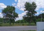 Ośrodek wypoczynkowy na sprzedaż, Szczerców, 700 m²   Morizon.pl   8155 nr20