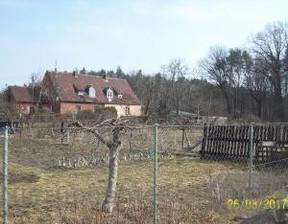 Działka na sprzedaż, Borszewice Kolejowe