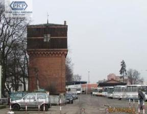 Lokal użytkowy do wynajęcia, Włocławek Stefana Okrzei, 273 m²