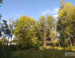 Morizon WP ogłoszenia | Działka na sprzedaż, Nieporęt, 6299 m² | 7147