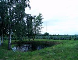Morizon WP ogłoszenia | Działka na sprzedaż, Miedzechów, 39291 m² | 7207