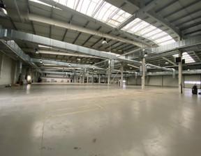 Centrum dystrybucyjne do wynajęcia, Wrocław Krzyki, 5458 m²