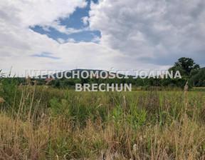 Działka na sprzedaż, Strzegomiany, 4600 m²