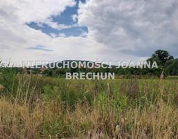 Morizon WP ogłoszenia | Działka na sprzedaż, Strzegomiany, 4600 m² | 0829