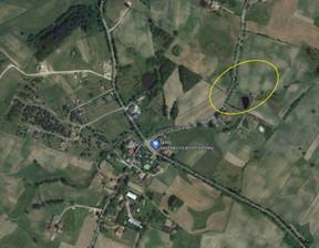 Działka na sprzedaż, Nowa Wieś Przywidzka, 1000 m²