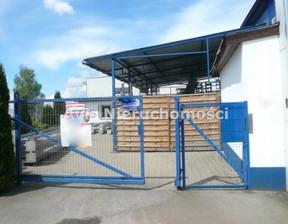 Magazyn, hala na sprzedaż, Świdnica, 551 m²