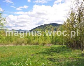 Działka na sprzedaż, Łomnica, 2525 m²