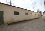 Magazyn do wynajęcia, Bystrzyca Kłodzka, 170 m² | Morizon.pl | 7842 nr3