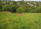 Działka na sprzedaż, Golkowice, 5900 m² | Morizon.pl | 4283 nr3