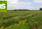Działka na sprzedaż, Rzeczyce Wiejska, 9000 m² | Morizon.pl | 7169 nr2