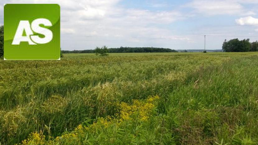 Działka na sprzedaż, Rzeczyce Wiejska, 9000 m² | Morizon.pl | 7169