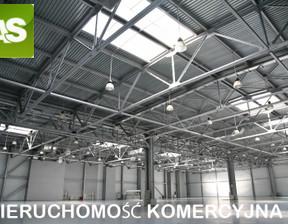 Lokal użytkowy do wynajęcia, Zbrosławice, 400 m²