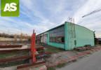 Działka na sprzedaż, Gliwice Łabędy, 5000 m² | Morizon.pl | 6055 nr6