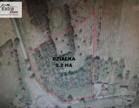 Działka na sprzedaż, Niechorze, 22000 m²