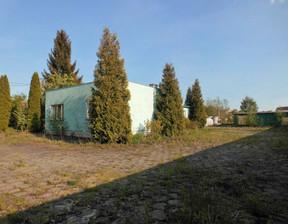 Obiekt do wynajęcia, Kwidzyn Łąkowa, 324 m²