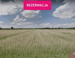 Działka na sprzedaż, Skarbki, 25600 m²