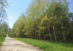 Działka na sprzedaż, Zajączkowo, 14500 m² | Morizon.pl | 1561 nr2