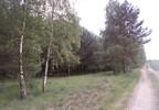 Działka na sprzedaż, Zajączkowo, 14500 m² | Morizon.pl | 1561 nr16