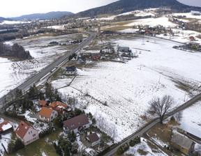 Działka na sprzedaż, Ptaszkowa, 1100 m²