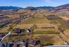 Działka na sprzedaż, Wola Kosnowa, 4400 m²