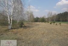 Działka na sprzedaż, Sędziejowice, 9600 m²