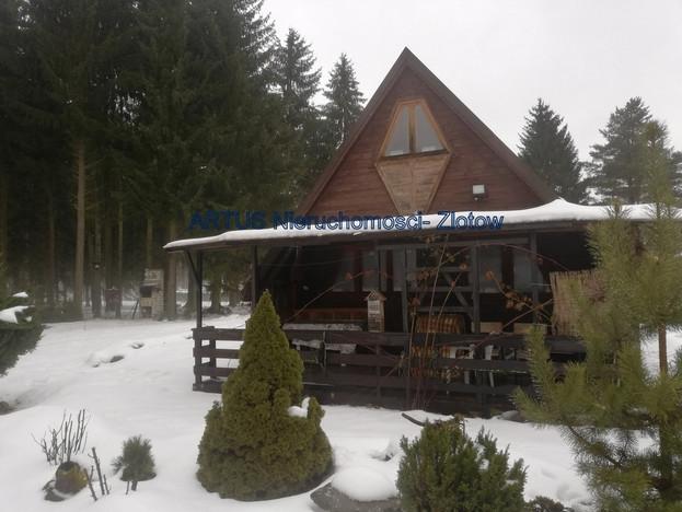 Działka na sprzedaż, Radawnica, 4804 m² | Morizon.pl | 5666