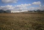 Przemysłowy na sprzedaż, Złotów Blękwit, 2594 m² | Morizon.pl | 8353 nr13