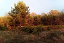 Działka na sprzedaż, Zadzim, 3100 m²