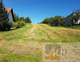 Morizon WP ogłoszenia | Działka na sprzedaż, Czułów, 8500 m² | 5436