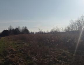 Działka na sprzedaż, Michałowice-Wieś, 7200 m²