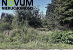 Morizon WP ogłoszenia | Działka na sprzedaż, Hanusek, 7700 m² | 4540