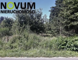Morizon WP ogłoszenia   Działka na sprzedaż, Hanusek, 7700 m²   4540
