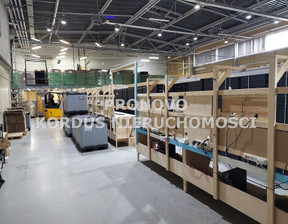 Magazyn, hala do wynajęcia, Szczecin Golęcino-Gocław, 3800 m²