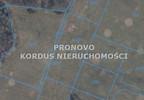 Działka na sprzedaż, Siecino, 4593 m² | Morizon.pl | 6398 nr9