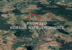 Działka na sprzedaż, Łabędzie, 78000 m² | Morizon.pl | 7542 nr4