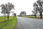 Działka na sprzedaż, Polaki, 6300 m²   Morizon.pl   2021 nr2