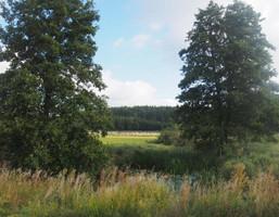 Morizon WP ogłoszenia | Działka na sprzedaż, Murowana Goślina Nieszawa, 150000 m² | 7924